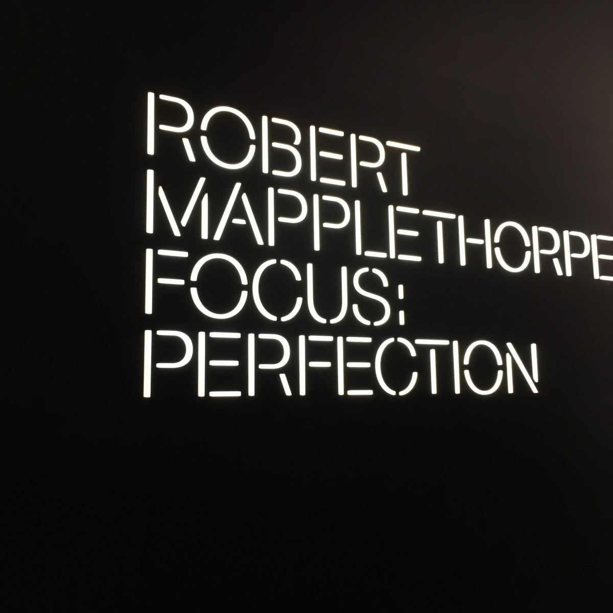 FOCUS : PERFECTION ROBERT MAPPLETHORPE